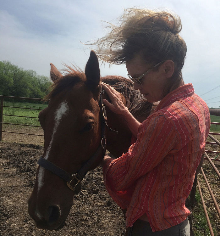 Equine Therapy | Horse Massage | Horse Therapy | EquusEQ